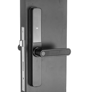 Black Narrow Stile Smart Home Hotel Residence Fingerprint Passcode Card Door Lock for Aluminum Frame Door