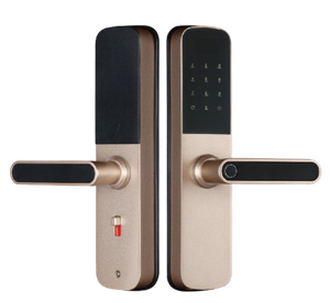 Multi-functional tuya smart lock with mini size
